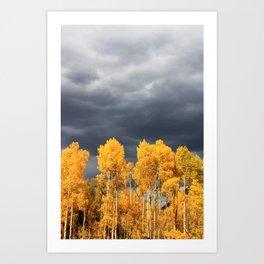 Golden Aspens and an Impending Storm Art Print