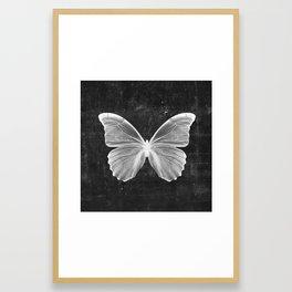 Butterfly in Black Framed Art Print