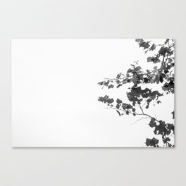 Tree Over Water Canvas Print