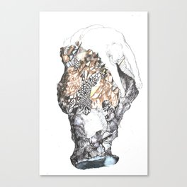 untitled (from the stone maiden series) Canvas Print