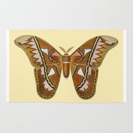 Butterfly Painting Rug