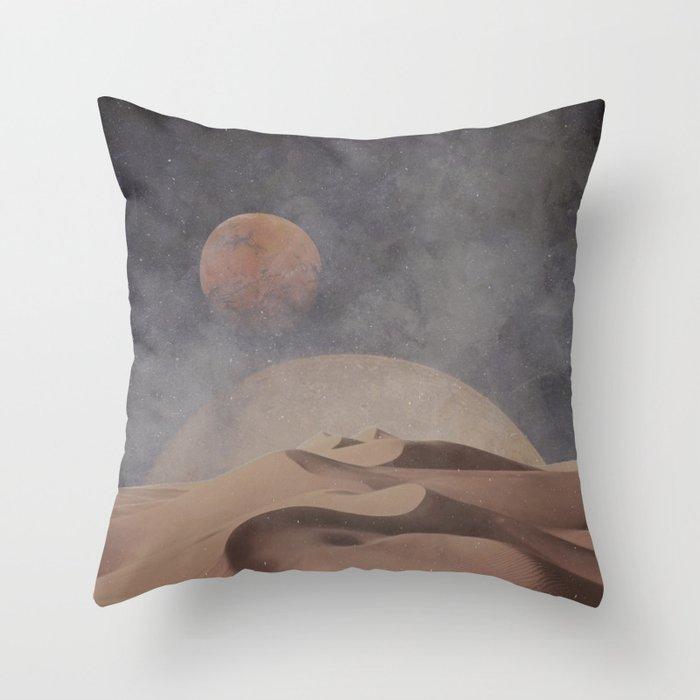 Spice Throw Pillow