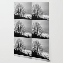 Deadly monochromatic tree Wallpaper