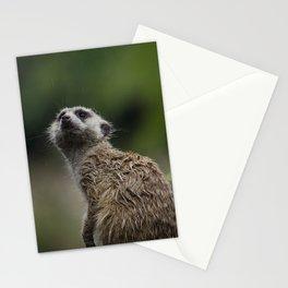 Meerkat 2 Stationery Cards