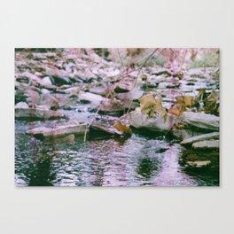 Hemp Hill Canvas Print