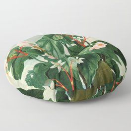 Pink Floral The Oblique-Leaved Begonias : Temple of Flora Floor Pillow