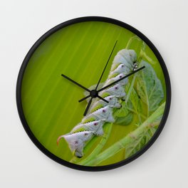 Tomato Horn Worm Wall Clock