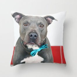 Handsome Blue Pitbull Throw Pillow