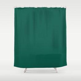 Celebration Town Green Shower Curtain