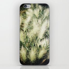 The warmth of earth iPhone Skin
