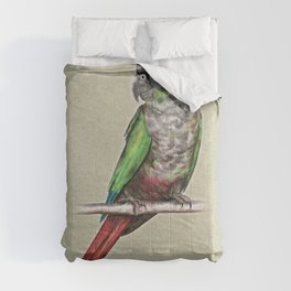 Green-cheeked conure Comforters