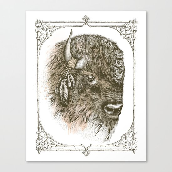 Portrait of a Buffalo Canvas Print