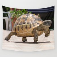 tortoise Wall Tapestries featuring Marching Baby Tortoise  by taiche