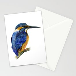 Kingfisher Bird Watercolor Painting Artwork Stationery Cards