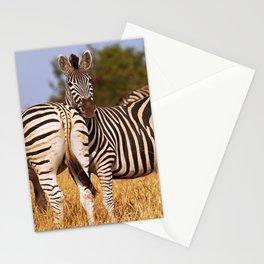 Zebras wildlife in Africa Stationery Cards