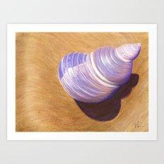 Seashell - Painting Art Print