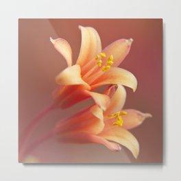 Twin Yucca Flowers Metal Print