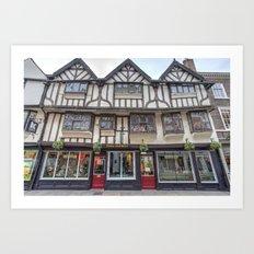 Mulberry Hall York Art Print