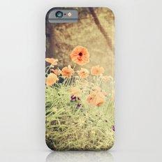 Orange pop Slim Case iPhone 6s