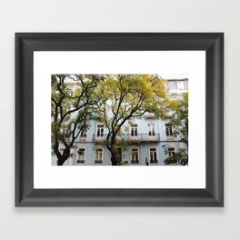 Behind Branches Framed Art Print