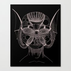 Masque de l'Eau (Water Mask) Canvas Print