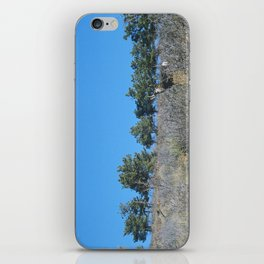 lyons & deer iPhone Skin