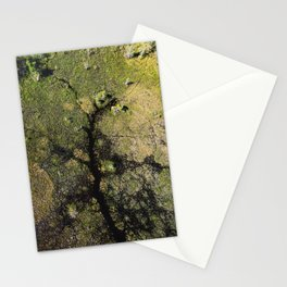 Wetland Arteries Stationery Cards