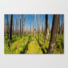 Desolate Death Canvas Print