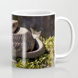 Watercolor Snake, Water Moccasin 09, Merchants Millpond, North Carolina, Swamp Defender Coffee Mug