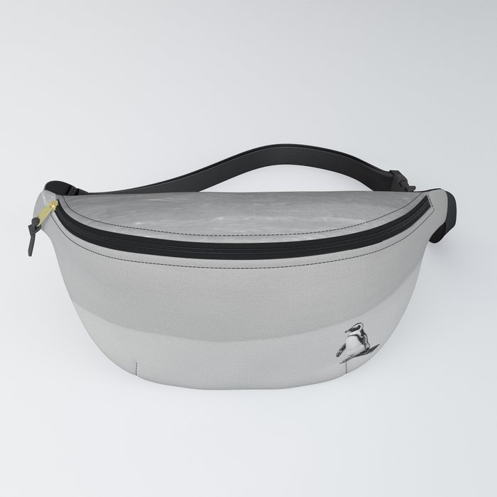 Lone African Penguin walking on beach Fanny Pack