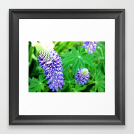 Purple and Green Framed Art Print