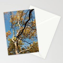 Ways In Which You Balance Me Stationery Cards