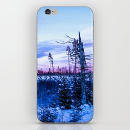 Sunset in Sweden iPhone Skin