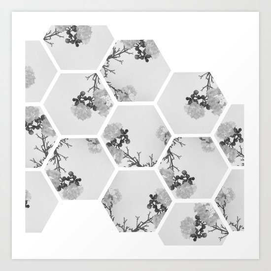 Hexagon Flowers. Art Print