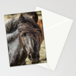 Wild Beauty Stationery Cards