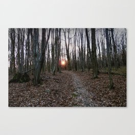 Turn Right at the Setting Winter Sun Canvas Print