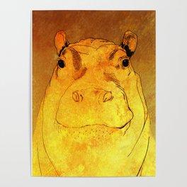 Golden Hippo Poster
