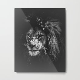 Black and white lion Metal Print