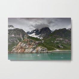Barren Wilderness Metal Print