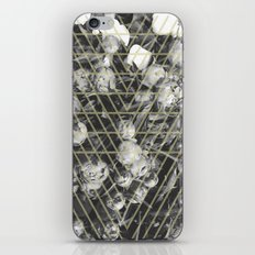 peonies iPhone & iPod Skin