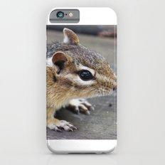 Chipmunk iPhone 6s Slim Case