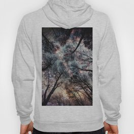 Starry Sky in the Forest Hoody
