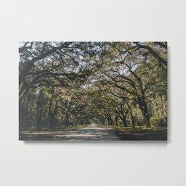 Wormsloe Live Oak Avenue - Savannah II Metal Print