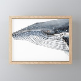 Humpback whale portrait Framed Mini Art Print