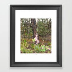 Native Flower Framed Art Print