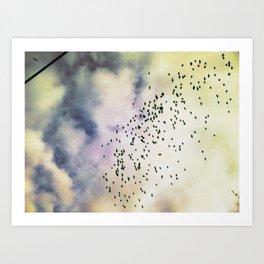 Cloud Birds Art Print