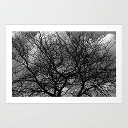 Cloud Tree Art Print