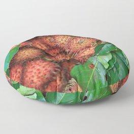 Rambutan Fruits background Floor Pillow