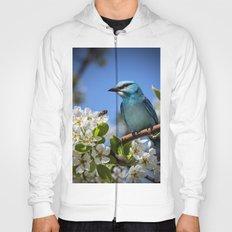 Blue Bird on Cherry Tree Branch Hoody