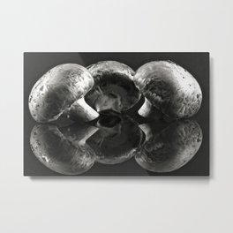 The Black Mirror Metal Print